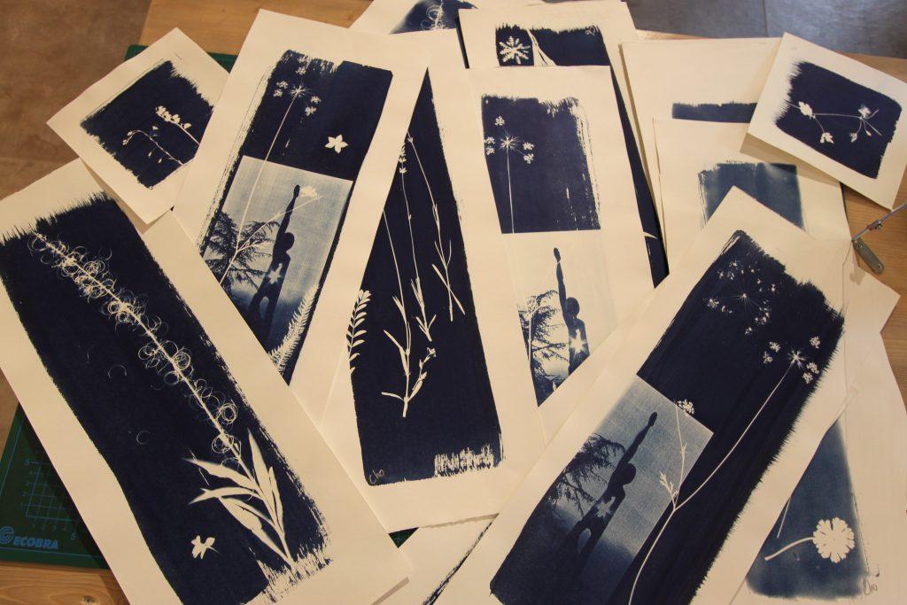 Cyanotypes de Cho